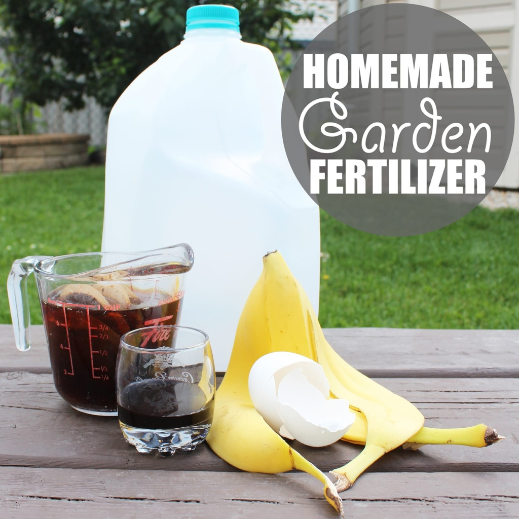 Homemade Fertilizer From Vegetable Scraps: Homemade Garden Fertilizer By Of