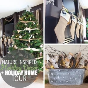 Nature Inspired Holiday Decor + Holiday Home Tour