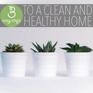 3 Easy Steps to a Clean and Healthy Home