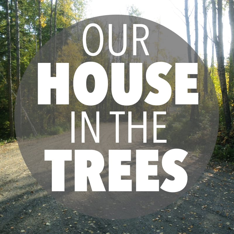 Our House in the Trees