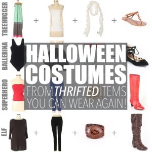 Halloween Costumes from Thrifted Items – You Can Wear Again!