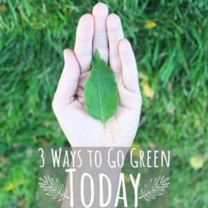 3 Easy Ways to Go Green Today