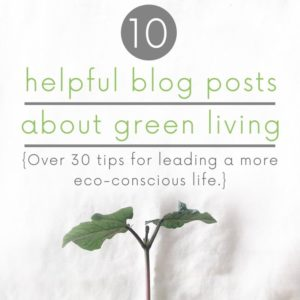 10 Helpful Blog Posts about Green Living