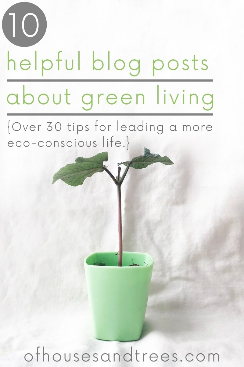 Whether you're starting out or well on your way, these 10 blog posts offer over 30 green living tips sure to help you live your most eco-conscious life.
