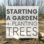 Always dreamed of starting a garden? Me too! Which is why it was the first project we tackled after moving into our sustainable home. Check it out!