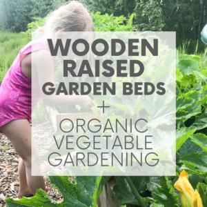 Wooden Raised Garden Beds + Organic Vegetable Gardening | Our House in the Trees | Episode 9