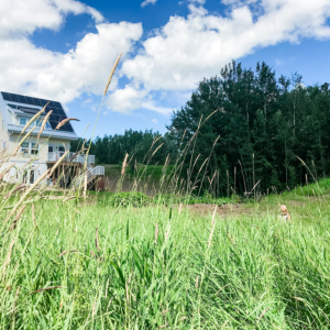 Welcome to Our House in the Trees - the sustainable home we built on 40 acres of land in Central, Alberta Canada. Join us on our journey!